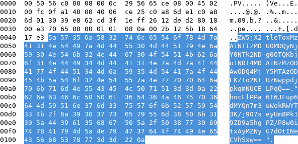 Base64 blob in a packet